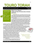Touro Torah Volume 2 Issue 6