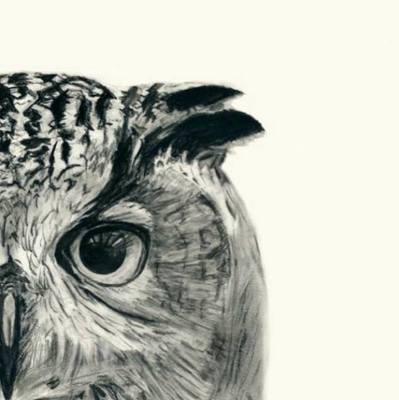 Introspect by Evra Khan