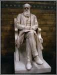 Statue of Charles Darwin, Cambridge, UK by Jordan Tai